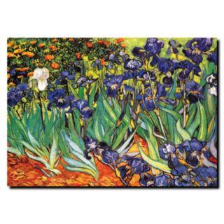 """Irises at Saint-Remy"" Canvas Wall Art by Vincent van Gogh"