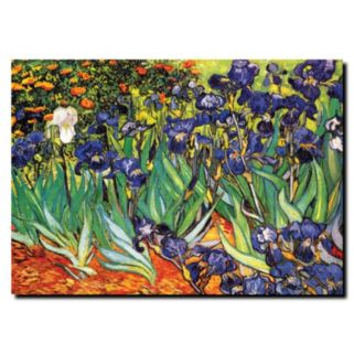 """Irises at Saint-Remy"" Canvas Wall Art by Vincent van Gogh"