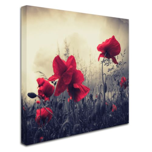 """Red for Love"" Canvas Wall Art"