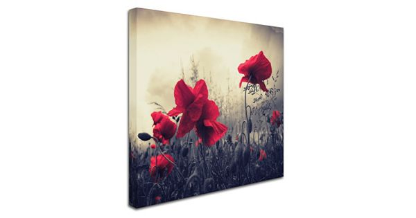 Quot Red For Love Quot Canvas Wall Art