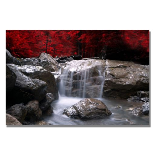 """""""Red Vision"""" Canvas Wall Art"""