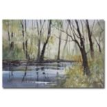 """Pine River Reflections"" Canvas Wall Art"