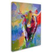 """Longhorn"" Canvas Wall Art"