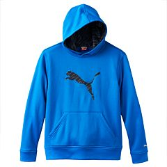 Boys 4-7 PUMA Big Cat Performance Hoodie