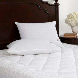 Chaps Signature Firm Density Pillow - Standard / Queen