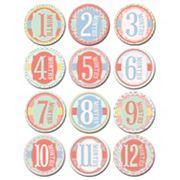 Sticky Bellies Monthly Sticker Set