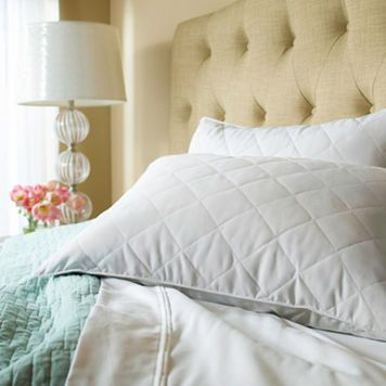 Sealy Down & Feather 2-pk. Pillows