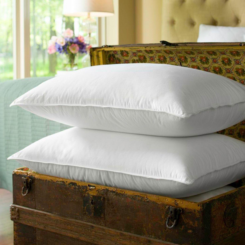 sealy primaloft 2pk pillows
