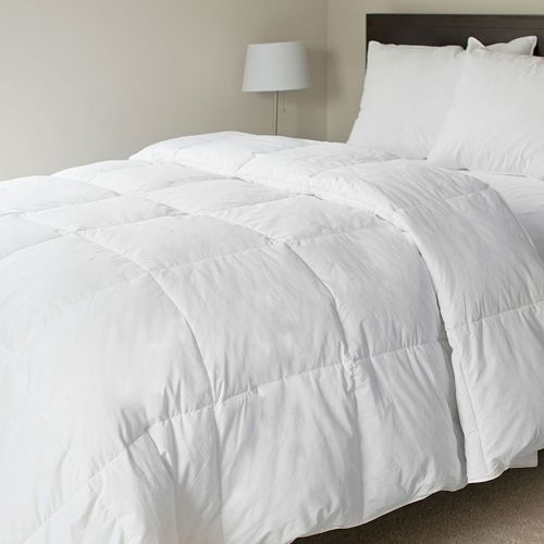 Portsmouth Home Solid Down Comforter