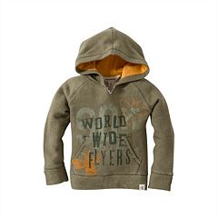 Baby Boy Burt's Bees Baby Organic 'World Wide Flyers' Terry Hoodie