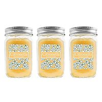 LumaBase 3 pc Citronella 12-oz. Mason Jar Candle Set