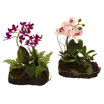 nearly natural 2-piece Orchid Island Flower Set