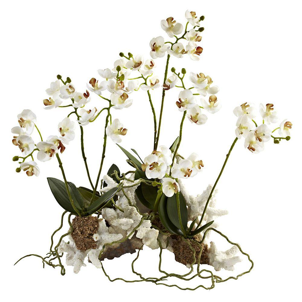nearly natural Mini Phalaenopsis Coral Planter