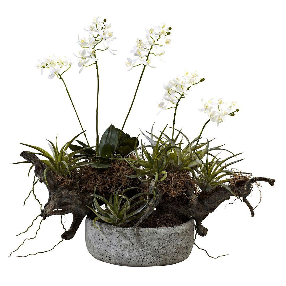 nearly natural Orchid & Succulent Garden Driftwood Decorative Arrangement