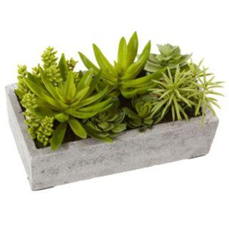 nearly natural Succulent Garden Concrete Planter Arrangement