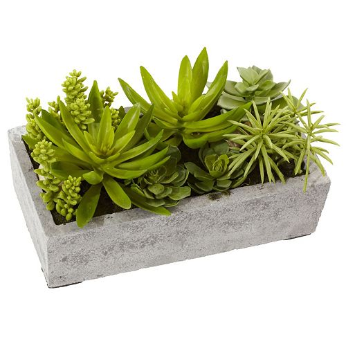 nearly natural Succulent Garden Concrete Planter Arrangement
