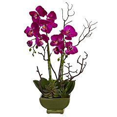 nearly natural Orchid & Succulent Arrangement