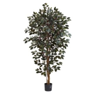 nearly natural 6-foot Capensia Ficus Tree