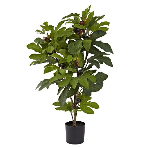 nearly natural 32-inch Fig Tree