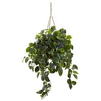 nearly natural Pothos Hanging Plant