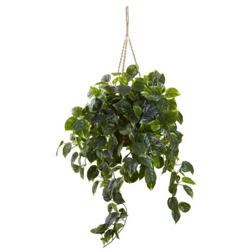 nearly natural Pothos Hanging ...