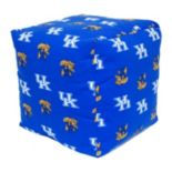 Kentucky Wildcats Cushion Cube Pouf