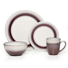Pfaltzgraff Eclipse Plum 16 pc Dinnerware Set