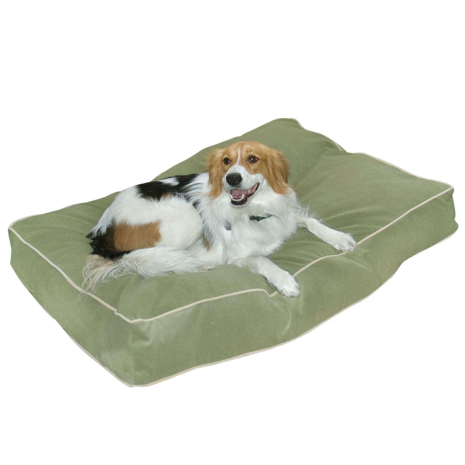 happy hounds deluxe buster dog bed