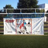 Aviva by RAVE Sports Seasonal Attack Zone Hockey & Lacrosse Tarp