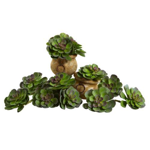nearly natural 12-piece Echeveria Succulent Arrangement Set