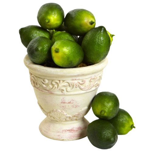 nearly natural 12-piece Faux Lime Set