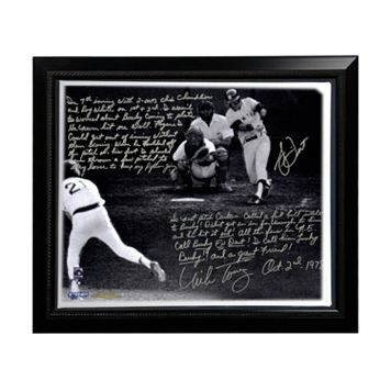 Steiner Sports Boston Red Sox Bucky Dent and Mike Torrez 1978 Walk-Off Home Run Facsimile 22