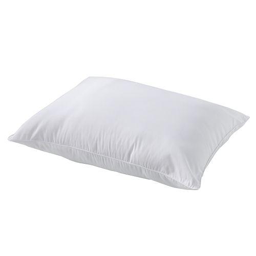 Asthma & Allergy Friendly 2-pk. Pillows