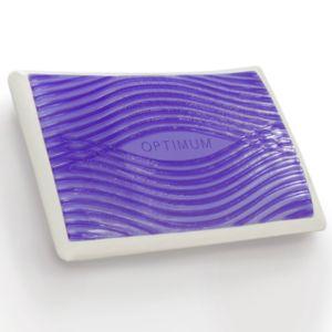 Sealy Optimum Memory Foam & Optigel Pillow