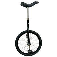 Fun 20 in Unicycle
