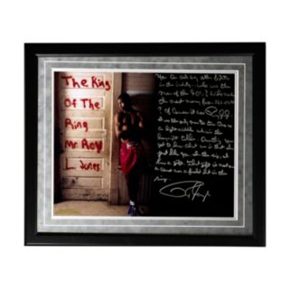 """Steiner Sports Boxing Roy Jones Jr. Dominating in the '90s Facsimile 16"""" x 20"""" Framed Metallic Story Photo"""