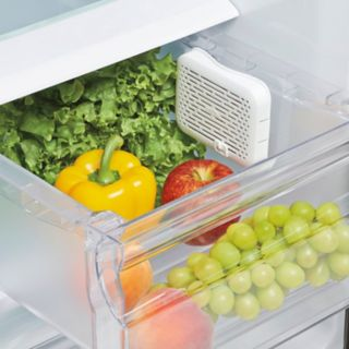 OXO Good Grips GreenSaver Crisper Insert