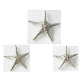 Silver Starfish 3-piece Wall Art Set