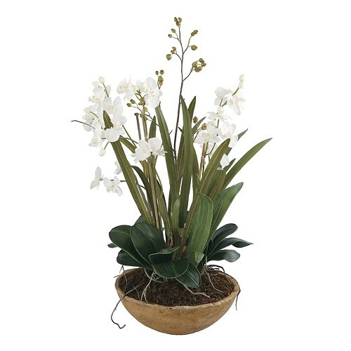Uttermost Moth Orchid Artificial Planter