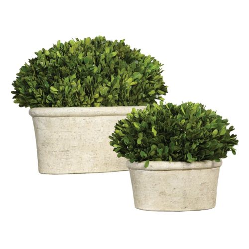 Preserved Boxwood 2-piece Artificial Planter Set