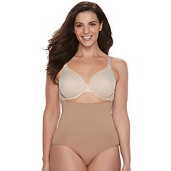 Plus Size Lunaire Shapewear High-Waist Brief 3253HL