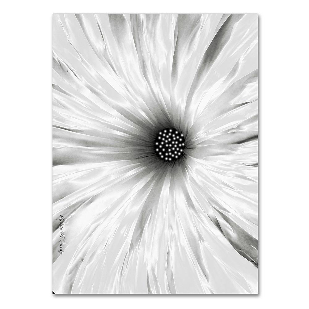 "Trademark Fine Art ""White Garden"" Canvas Wall Art"