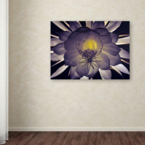 "Trademark Fine Art ""Night Angel"" Canvas Wall Art by Kurt Shaffer"