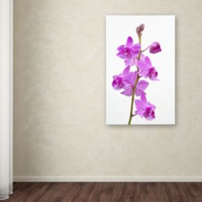 "Trademark Fine Art ""Purple Orchids"" Canvas Wall Art by Kurt Shaffer"
