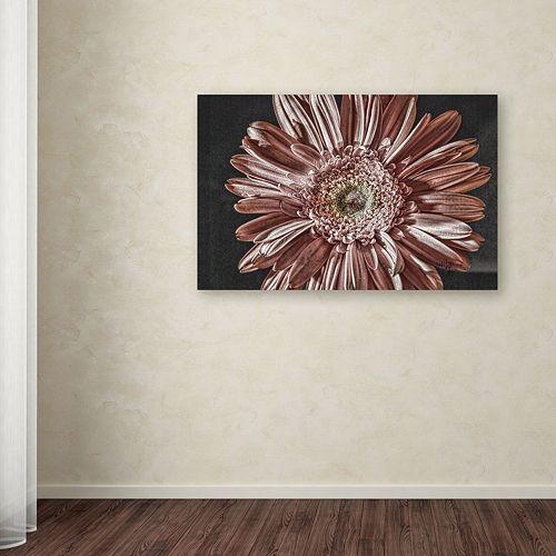 "Trademark Fine Art ""Silvery Pink"" Canvas Wall Art"
