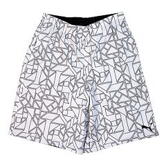 Boys 4-7 PUMA 2-In-1 Prism Shorts