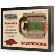 Arkansas Razorbacks StadiumViews 3D Wall Art