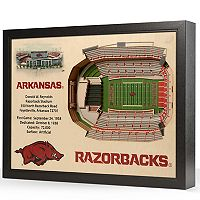 Arkansas Razorbacks StadiumViews 3D Wall Art