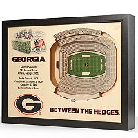 Georgia Bulldogs StadiumViews 3D Wall Art