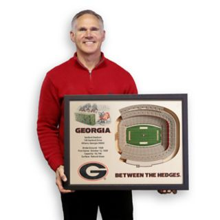 Georgia Bulldogs StadiumViews 3D Wall Art